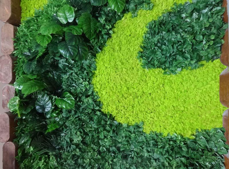 Зелена стена в Сапарева баня