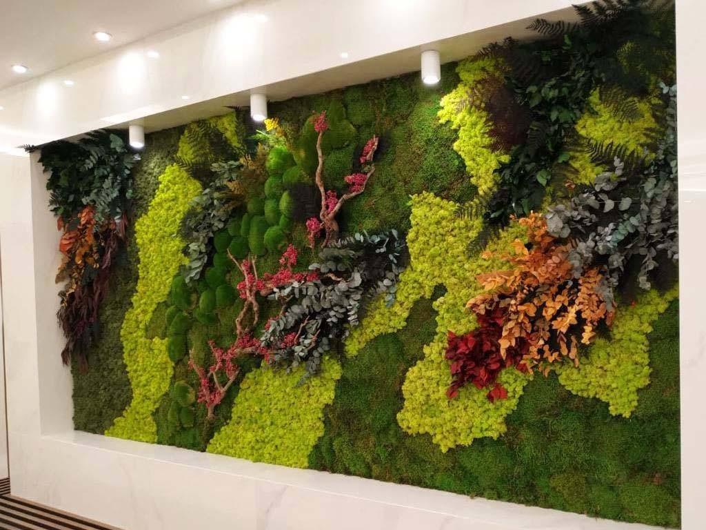 Зелена стена от растения без нужда от поддръжка в СПА зона на хотел