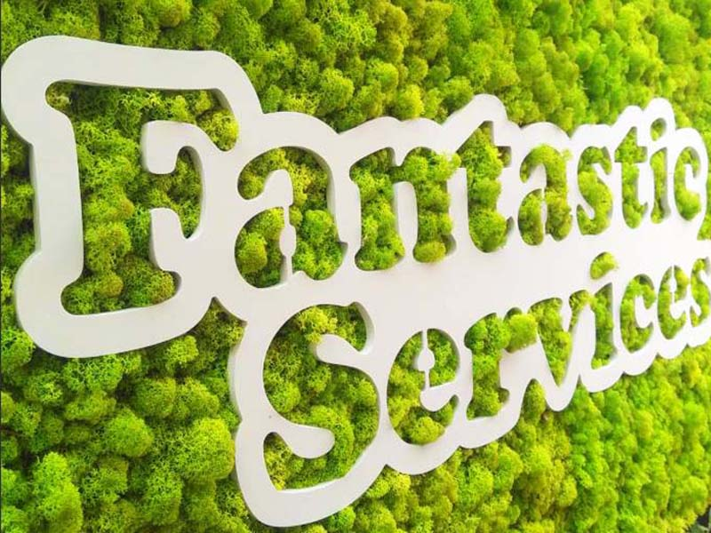Естествен мъх за фон на логото на Fantastic services