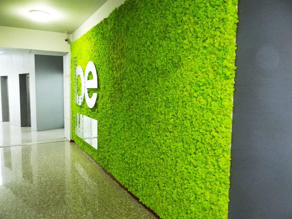 Интериорна стена от светло зелен естествен мъх в бизнес сграда