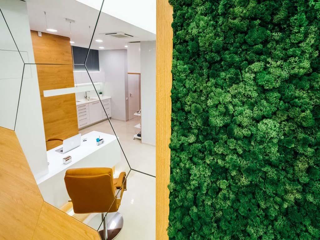 Зелено пано от горски мъх