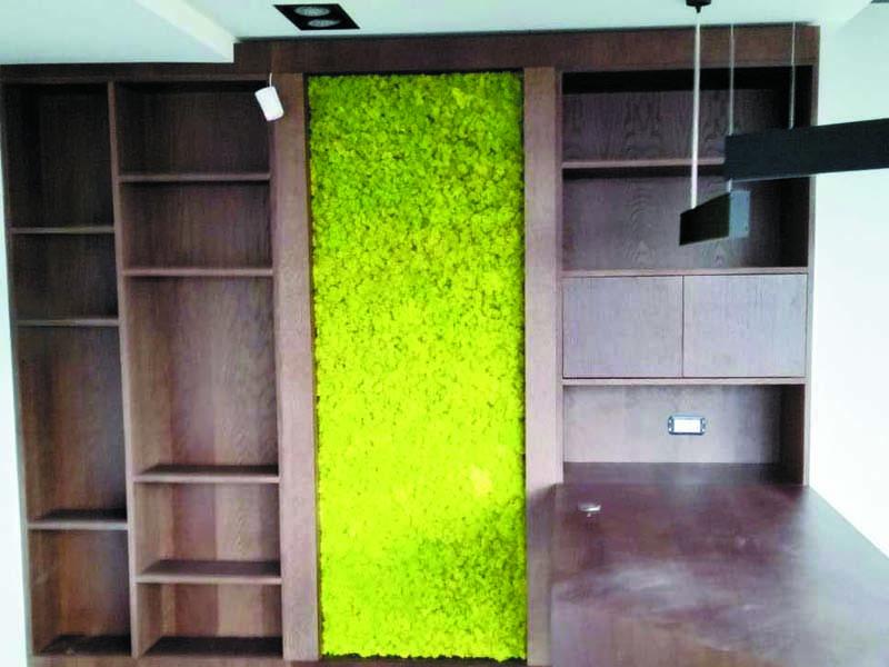 Зелени стени от светло зелен скандинавски мъх