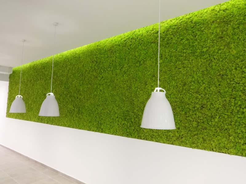 Зелена стена от полярен мъх с размер 20 кв.м.