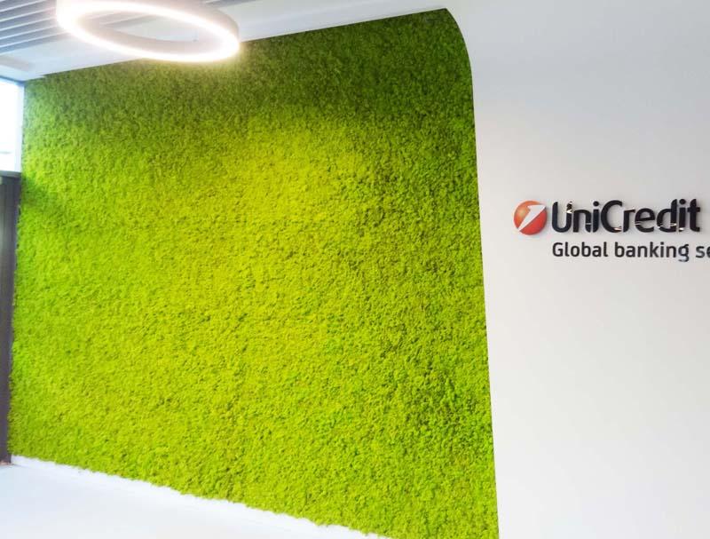 Зелена стена от светло зелен мъх в банка