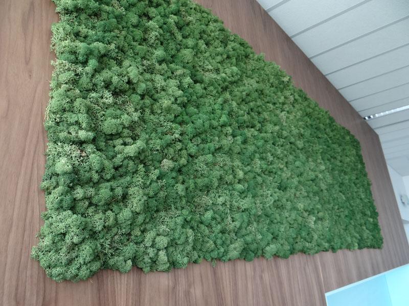 Зелена стена в офиса на водеща фармацевтична компания, град София.
