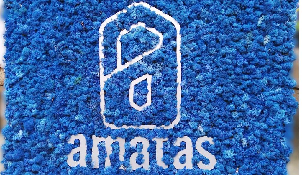 AMATAS избра за офиса си в София декорация от естествен скандинавски мъх с наситено син цвят