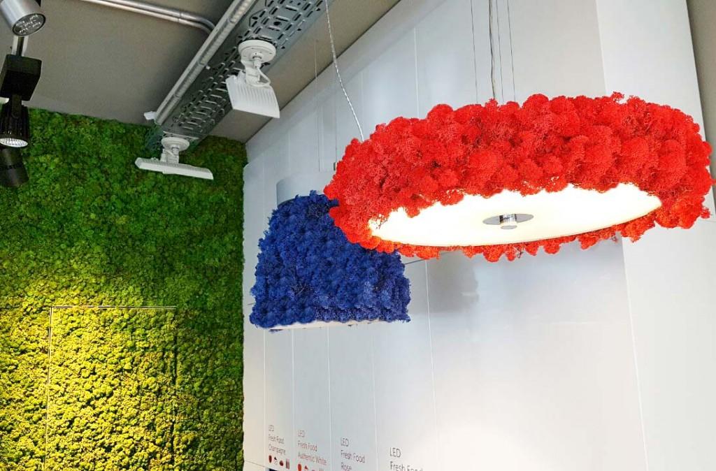 LED осветителни тела със Скандинавски мъх