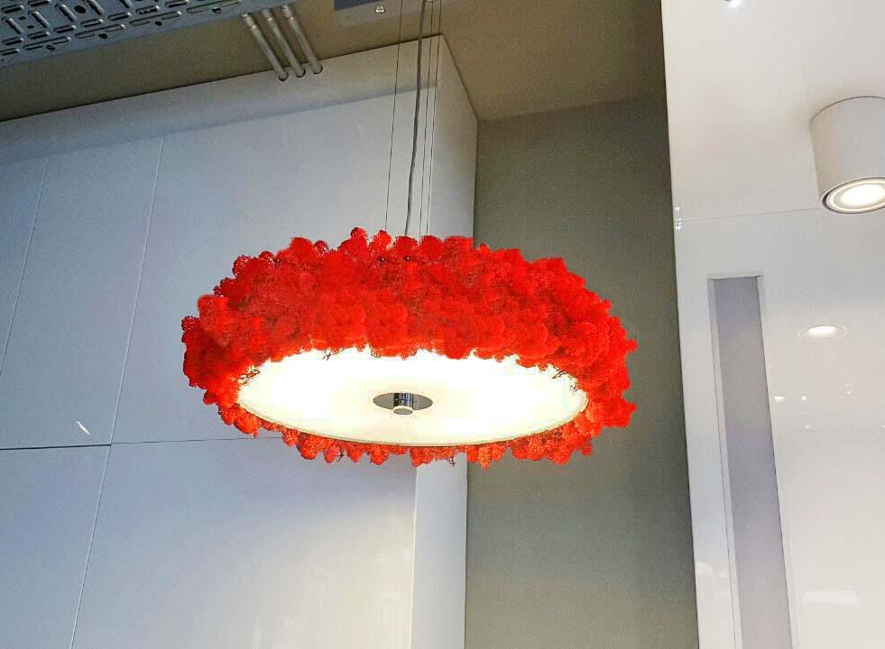 Лампа на Philips с полярен мъх